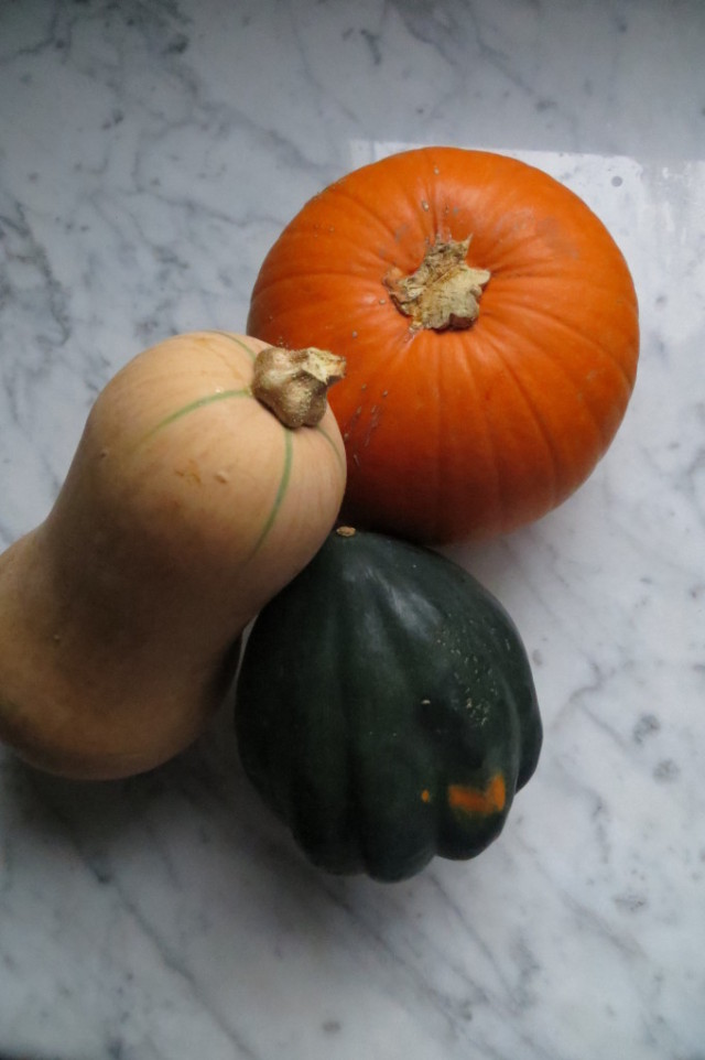 Butternut, acorn, and pumpkin Squashes startwithfourwalls.com